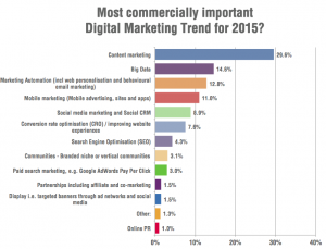 Digital-marketing-trends-2015-survey-SEO-actions